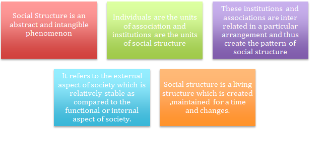 Definition of Social-Structure in Sociology