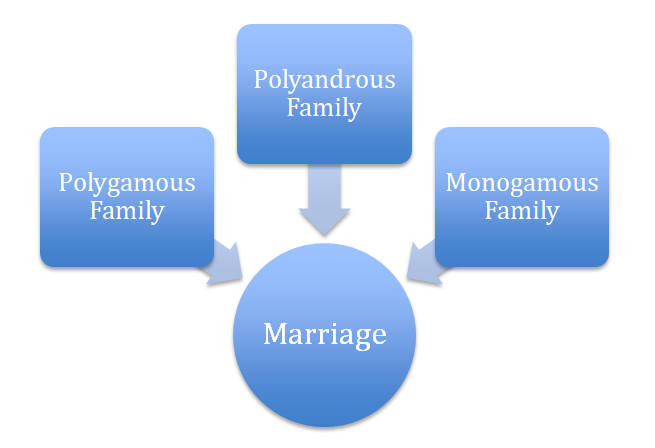 Types of family on the basis of Marriage